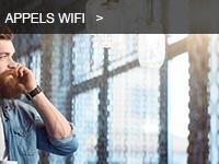 Gamme d'appel Wi-Fi du distributeur de réseaux Wi-Fi Ruckus